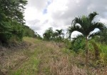 Costa Rica Ocean View Lot entrance