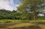 Costa Rica Lot Mountain View Trees Road San Buenas