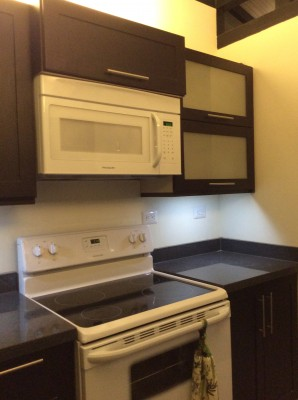 Costa Rica villa for rent microwave