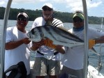 Rooster Fish costa rica 1